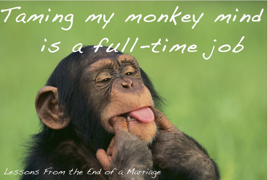 I Am Alone But Happy Images Monkey Mind – Lesson...