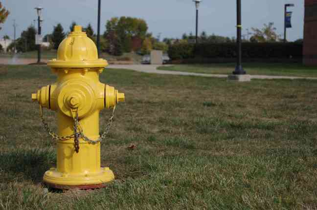 Yellow_Fire_Hydrant