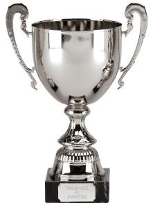 silver-trophy