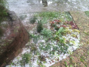 That's a lot of hail!